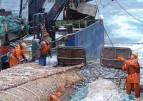 """Развитие рыбопромышленного комплекса акватории Черного и Азовского морей обсудят на """"Гидроавиасалоне-2016"""" в сентябре"""