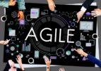 Agile и Lean: выживает только шустрый!